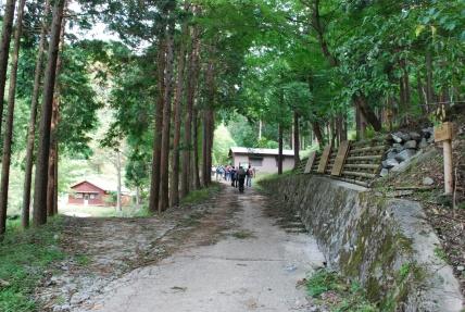 Yadoriki (25)