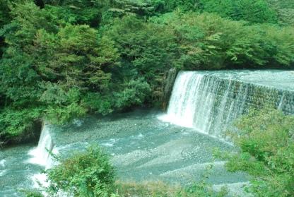 Yadoriki (9)